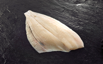 Fresh Plaice Fillets